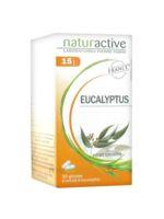 Naturactive Gelule Eucalyptus, Bt 30 à Hayange