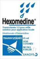 Hexomedine Transcutanee 1,5 Pour Mille, Solution Pour Application Locale à Hayange