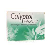 Calyptol Inhalant, émulsion Pour Inhalation Par Fumigation à Hayange
