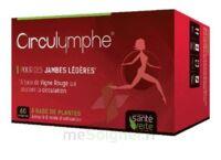 Santé Verte Circulymphe Triple Actions B/60 à Hayange