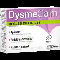 Dysmecalm Comprimés B/15 à Hayange