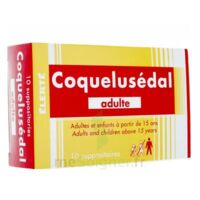 Coquelusedal Adultes, Suppositoire à Hayange