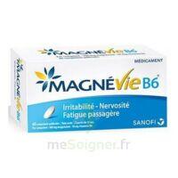 Magnevie B6 100 Mg/10 Mg Comprimés Pelliculés Plaq/60 à Hayange