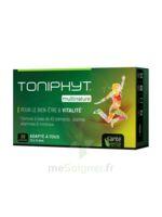 Santé Verte Toniphyt Multinature 30 Comprimés à Hayange