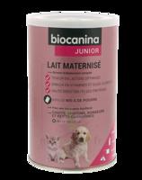 Biocanina Lait Poudre Maternisé B/400g à Hayange