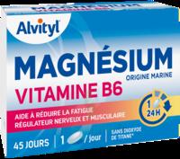 Govital Magnésium Vitamine B6 Comprimés B/45 à Hayange