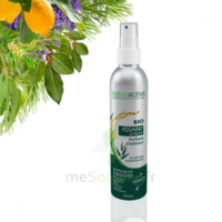 Naturactive Assaini'spray 200ml à Hayange
