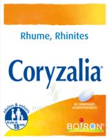 Boiron Coryzalia Comprimés Orodispersibles à Hayange