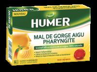 Humer Pharyngite Past Mal De Gorge Baies Sauvages à Hayange