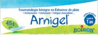 Boiron Arnigel Gel T/45g à Hayange