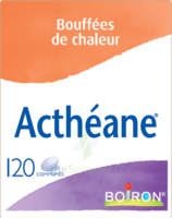 Boiron Acthéane Comprimés B/120 à Hayange